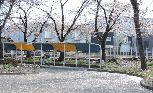 DSCN2146-2.jpg